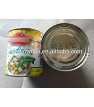 VEGETABLE FRUIT SALAD - Jolly